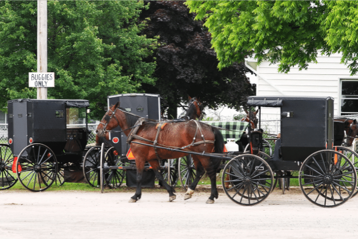 Why Can't The Amish Ride Bikes With Pedals